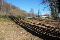 Terreno edificabile in Val di Chy frazione Alic...